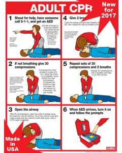 Chart: CPR for Adults